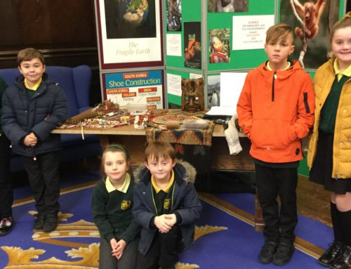 Primary Environmental Conference – Hull
